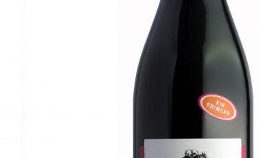 Tout savoir sur le vin primeur : vinprimeur.net